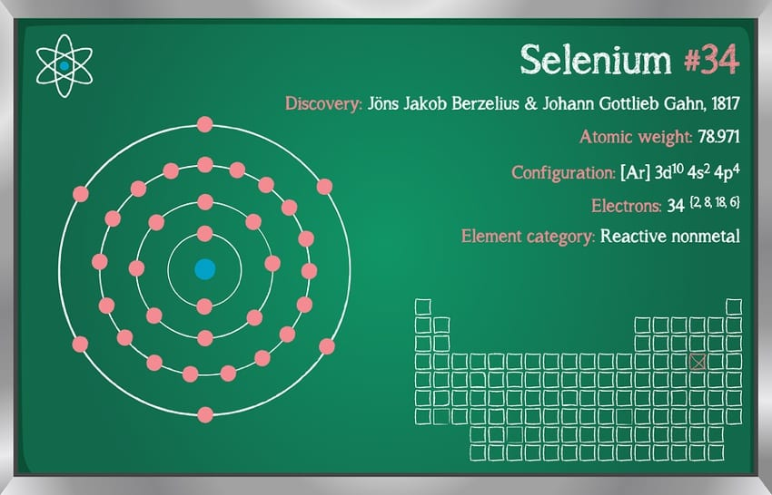 Selenium Chemistry