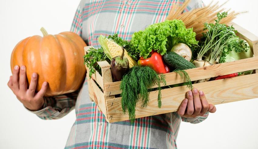 Vegan vegetable box