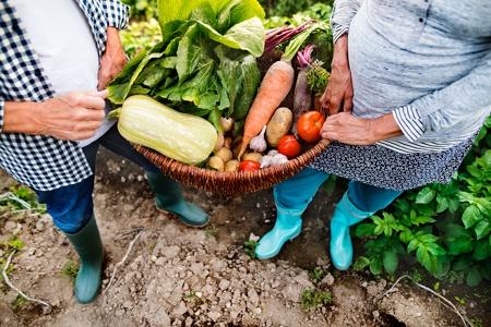 Veganic Growing