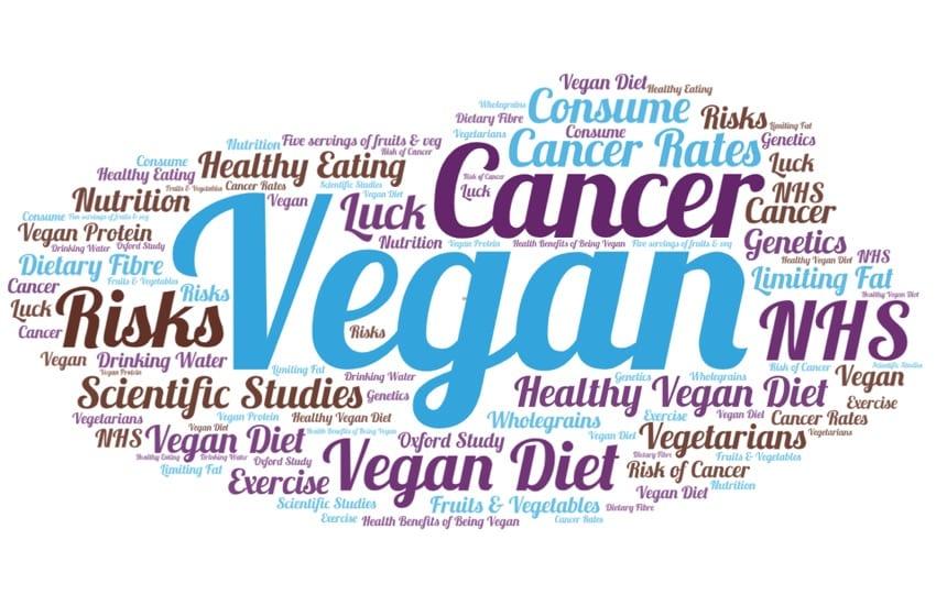 Vegan cancer word cloud