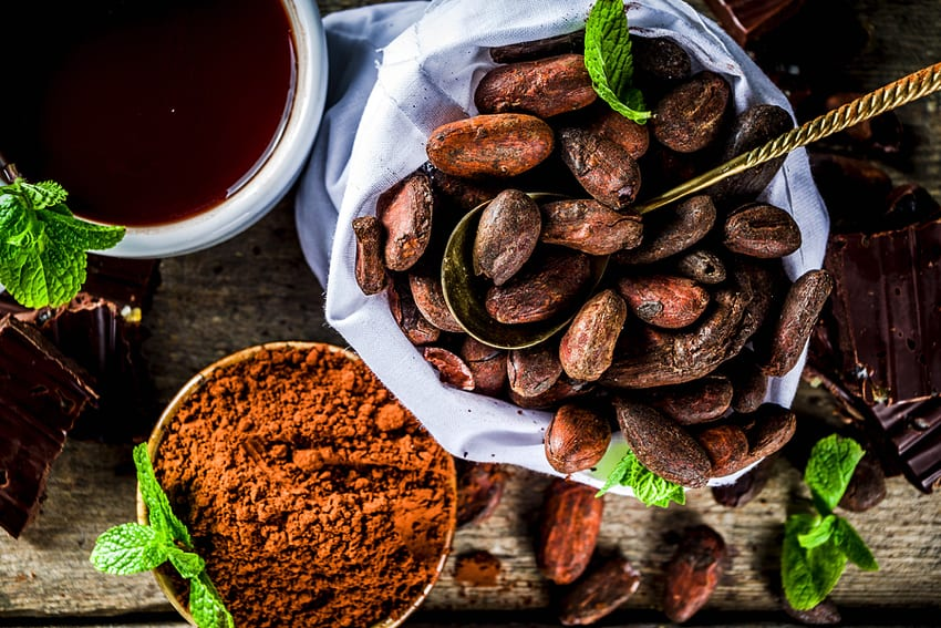 Cocoa beans and powder