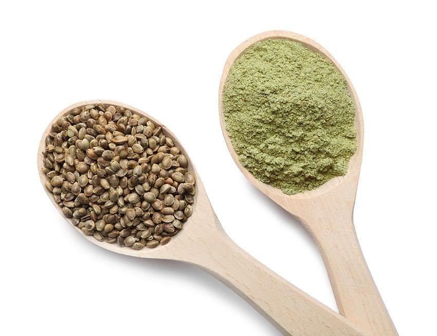 Hemp protein powder is made from hemp seeds