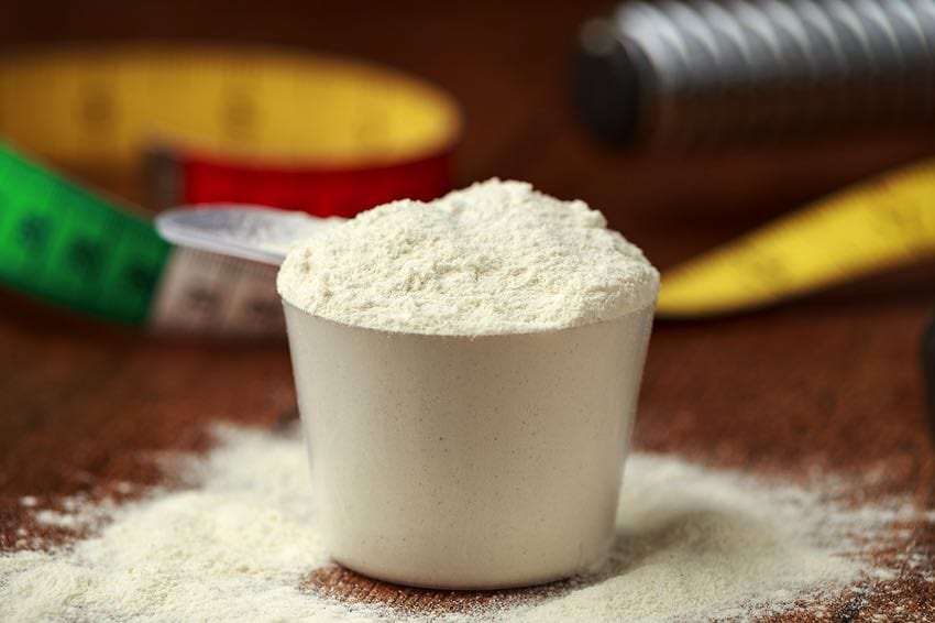 Protein powder general