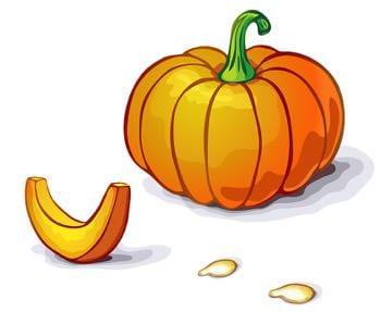 Pumpkin seed cartoon
