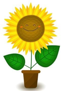 Smiling sunflower cartoon