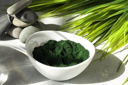 Algae Protein Powder