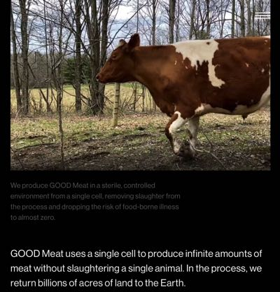 GOOD Meat Environment